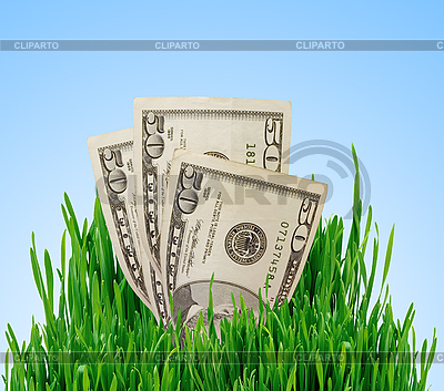 Rosnąca pieniądze. Koncepcji finansowej. | Foto stockowe wysokiej rozdzielczości |ID 3019838