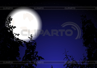 Night forest   Stock Vector Graphics  ID 3023786