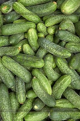 绿色黄瓜 | 高分辨率照片 |ID 3038803