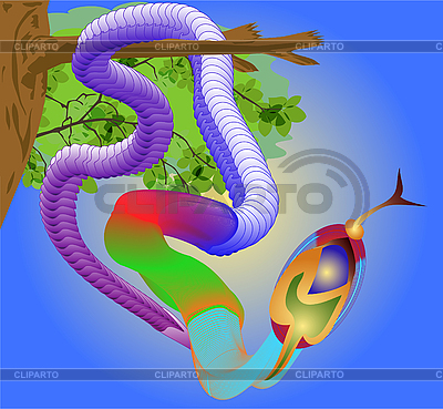 Tropical snake | Klipart wektorowy |ID 3038764