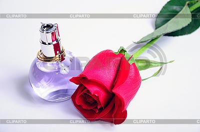 Perfumy i róża na białym tle | Foto stockowe wysokiej rozdzielczości |ID 3061515