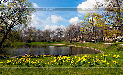 Dresden in spring time   High resolution stock photo  ID 3040345