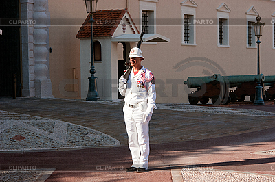 Monaco palace guard standing | High resolution stock photo |ID 3040582