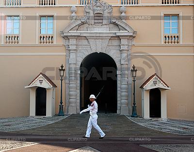 Monaco palace guard walking | High resolution stock photo |ID 3040583