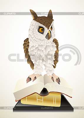Owl and books | Stock Vector Graphics |ID 3050974