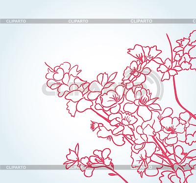 樱花 | 向量插图 |ID 3051100