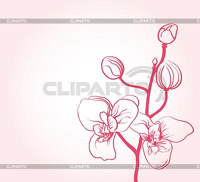 벚꽃   벡터 클립 아트  ID 3051102