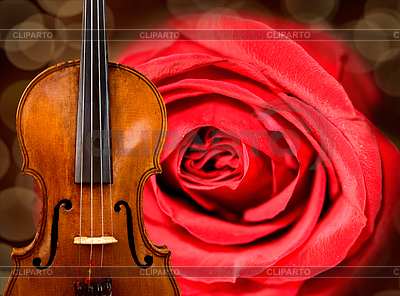 Violin background | High resolution stock photo |ID 3247868