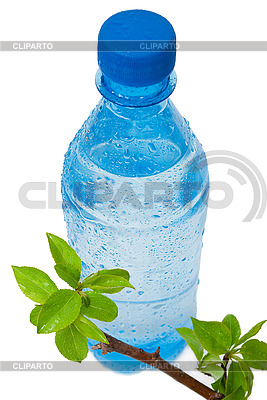 Bottle of water with green apple branch | High resolution stock photo |ID 3044351