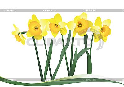 Żółte kwiaty   Klipart wektorowy  ID 3051858