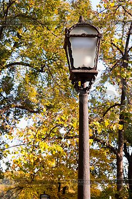 Lantern in autumn park   High resolution stock photo  ID 3080194
