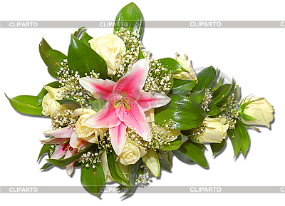 꽃 | 높은 해상도 사진 |ID 3040830