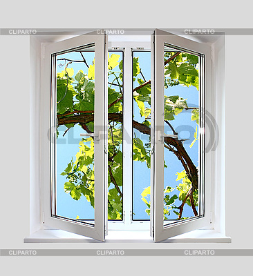 Open plastic window with kind on grape-vine | High resolution stock photo |ID 3041906