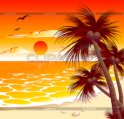 Tropical sunset | Stock Vector Graphics |ID 3045274