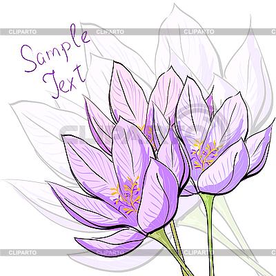 Blumenkarte | Stock Vektorgrafik |ID 3045743