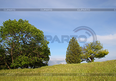 Landscape | High resolution stock photo |ID 3079360