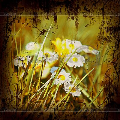 Retro Style Nature Background | Foto stockowe wysokiej rozdzielczości |ID 3054273