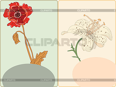 Cards with poppy and lily   Stock Vector Graphics  ID 3066124