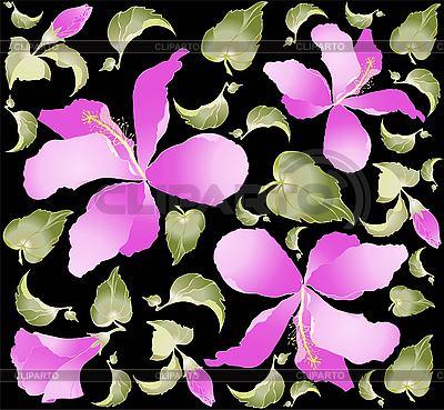 Tło z hibiskusa | Klipart wektorowy |ID 3060965