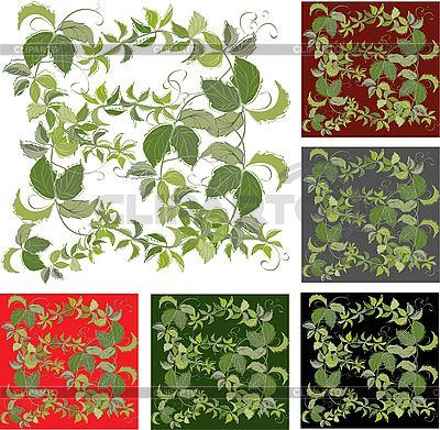 Hintergründe mit Blättern von wilden Trauben | Stock Vektorgrafik |ID 3071378