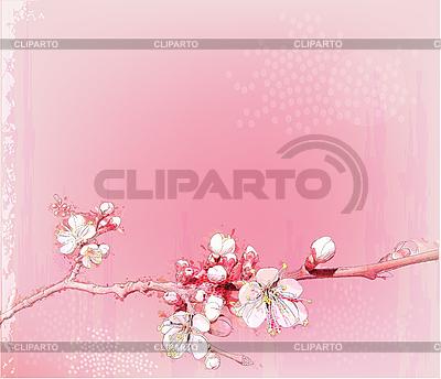 日本樱花盛开 | 向量插图 |ID 3045999