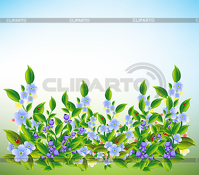 Summer meadow flowers | Stock Vector Graphics |ID 3047619