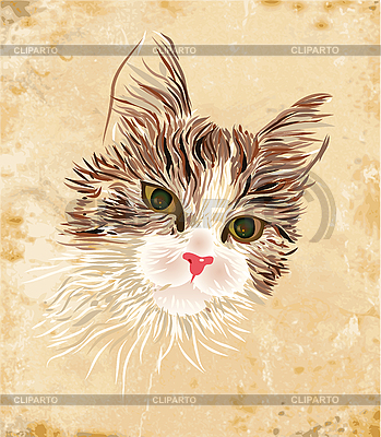 Vintage portrait of the cat | Stock Vector Graphics |ID 3050285