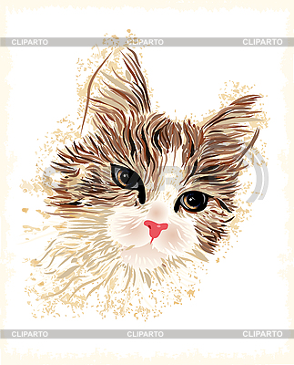 Vintage portrait of the cat | Stock Vector Graphics |ID 3050300