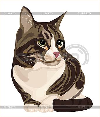 Cat | Stock Vector Graphics |ID 3051276