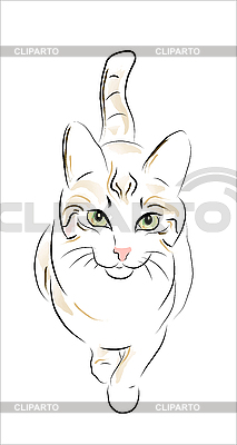 Sketch of tabby cat | Stock Vector Graphics |ID 3051346