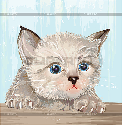 Fluffy kitten with blue eyes | Stock Vector Graphics |ID 3053730