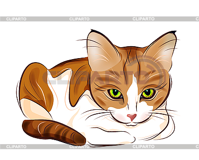 Portrait of ginger tabby cat | Stock Vector Graphics |ID 3058822