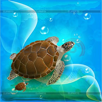 海龟在海洋中游泳 | 向量插图 |ID 3059313