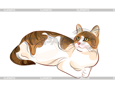 Portrait of ginger tabby cat   Stock Vector Graphics  ID 3068181