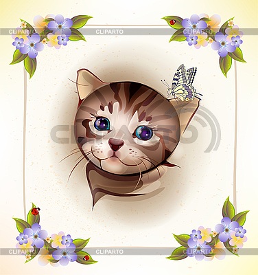 Card with little tabby kitten and butterfly | Stock Vector Graphics |ID 3069478