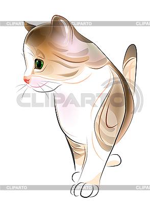 Ginger tabby kitten | Stock Vector Graphics |ID 3077535