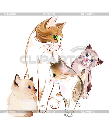 Happy cat family | Stock Vector Graphics |ID 3077540