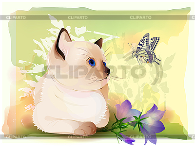 Greeting card with kitten watching at butterfly | Stock Vector Graphics |ID 3081343