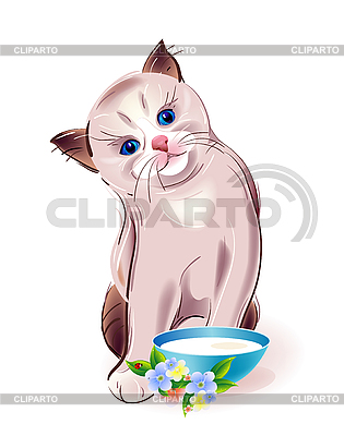 Kitten with bowl | Stock Vector Graphics |ID 3082383