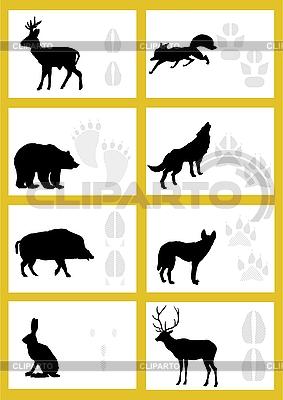 Отпечатки следов зверей | Векторный клипарт |ID 3167096