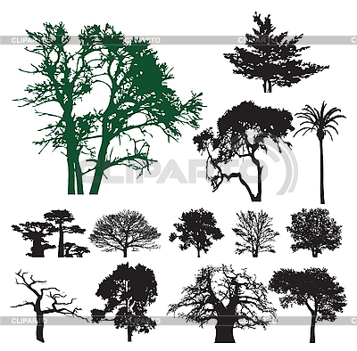 Tree silhouettes | Stock Vector Graphics |ID 3116487