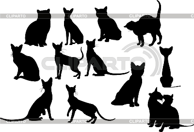 Zwölf Katzen Silhouetten. | Stock Vektorgrafik |ID 3200298