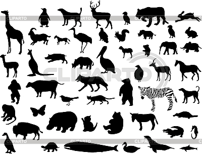 Collection of animal silhouettes | Stock Vector Graphics |ID 3207939