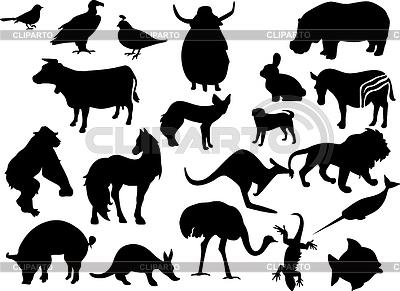 Schwarze Silhouetten von Tieren | Stock Vektorgrafik |ID 3222593