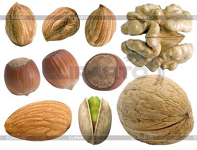 Орехи | Фото большого размера |ID 3049133