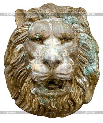 Lion stucco | Foto stockowe wysokiej rozdzielczości |ID 3049326