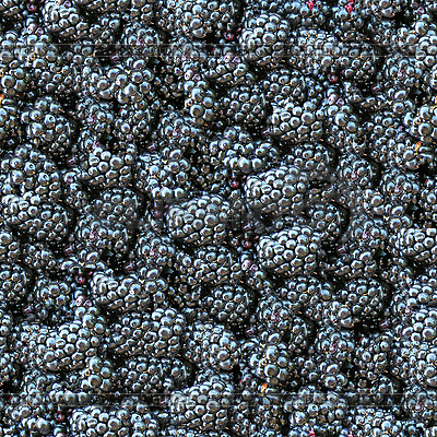 Blackberry seamless background | High resolution stock photo |ID 3049470