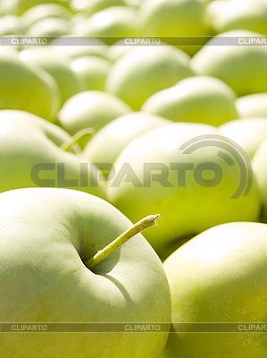 Zielone jabłka | Foto stockowe wysokiej rozdzielczości |ID 3059333