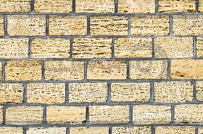 Shell limestone wall texture background | 높은 해상도 사진 |ID 3331951