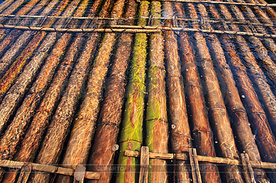 Bamboo raft | High resolution stock photo |ID 3050602